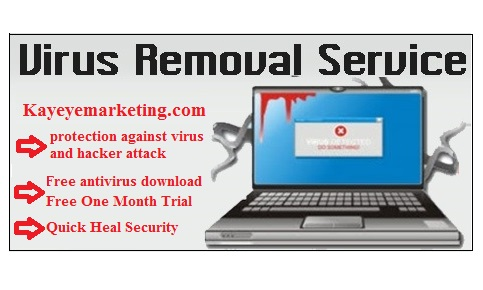Virus removal Service